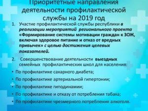 Приоритетные направления деятельности овд в 2019 году
