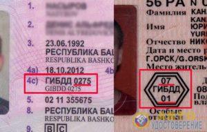 Госуслуги кем выдано водительское удостоверение где посмотреть на правах