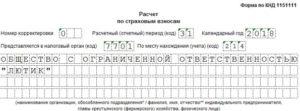 Рсв форма кнд 1151111 директор без зарплаты образец заполнения скачать