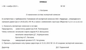 Приказ о назначении руководителя ликвидационной комиссии