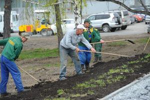Правила благоустройства новосибирской области